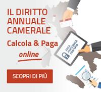 Diritto Annuale - Calcola&Paga