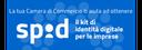 SPID (Sistema Pubblico di Identità Digitale)
