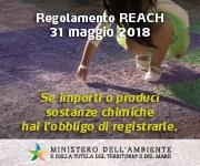 """Seminario """"REACH e CLP - Aspetti applicativi ed adempimenti per le PMI"""""""