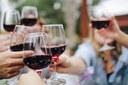 Wine Lambrusco | Incontri b2b virtuali con buyer europei.  Partecipazione gratuita