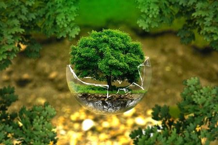 Ambiente: al via un ciclo formativo