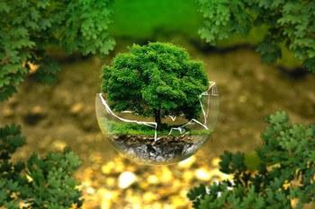 Webinar in tema ambientale